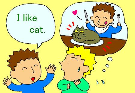 I like cat